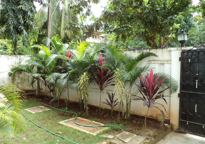 Garden Attached Apartment in Goa